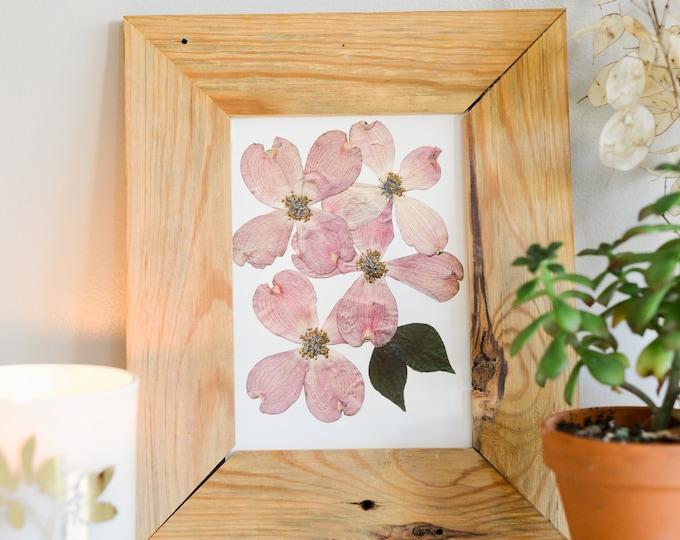 Pink Flowering Dogwood, VA , NC State Flower | Print reproduction artwork of pressed flowers | 100% cotton rag paper | Botanical artwork