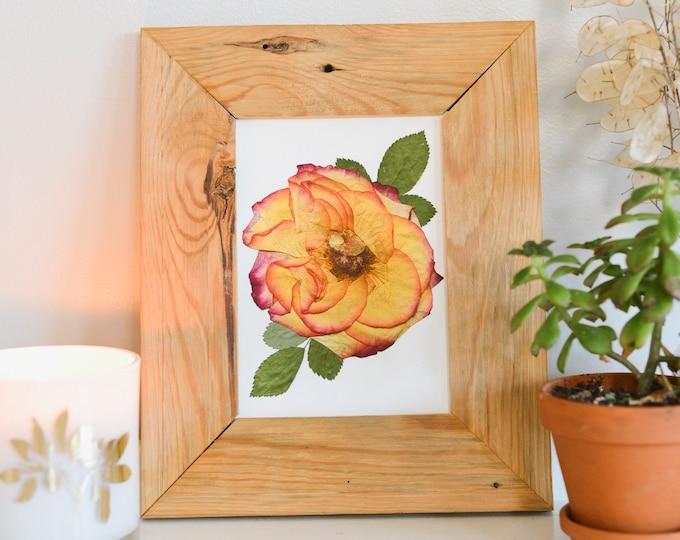 Rose / June   Print artwork of pressed flowers   100% cotton rag paper   Birth month flowers, Botanical artwork