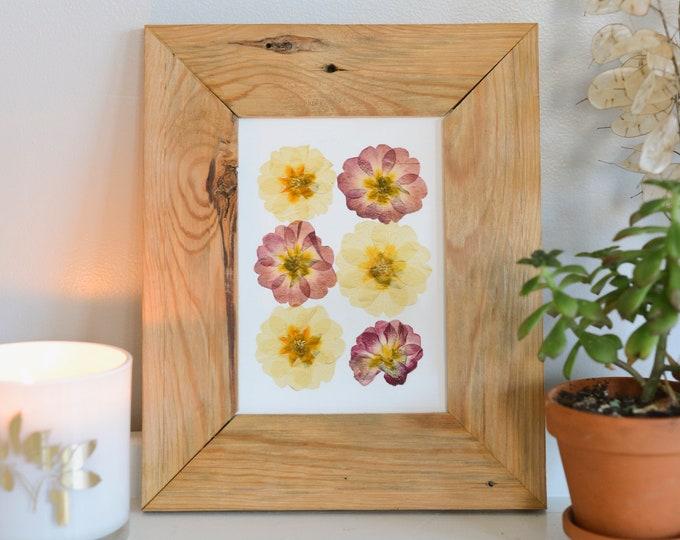 Primrose / February | Print artwork of pressed flowers | 100% cotton rag paper | Birth month flowers, Botanical artwork, herbarium