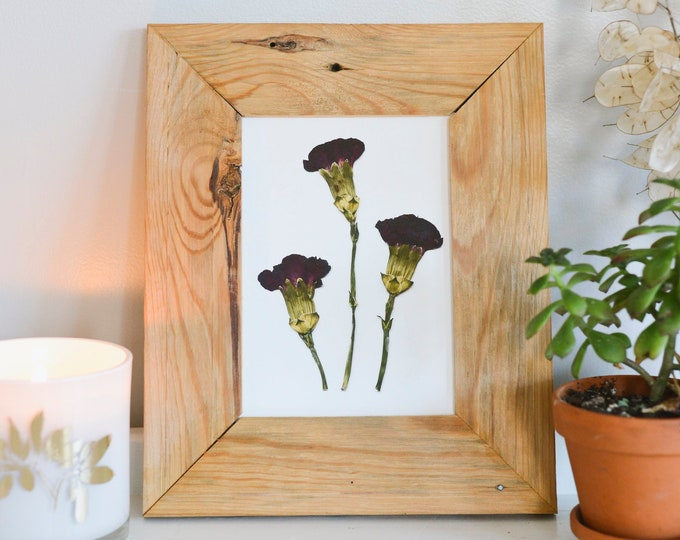 Carnations / January | Print artwork of pressed flowers | 100% cotton rag paper | Birth month flowers, Botanical artwork, herbarium