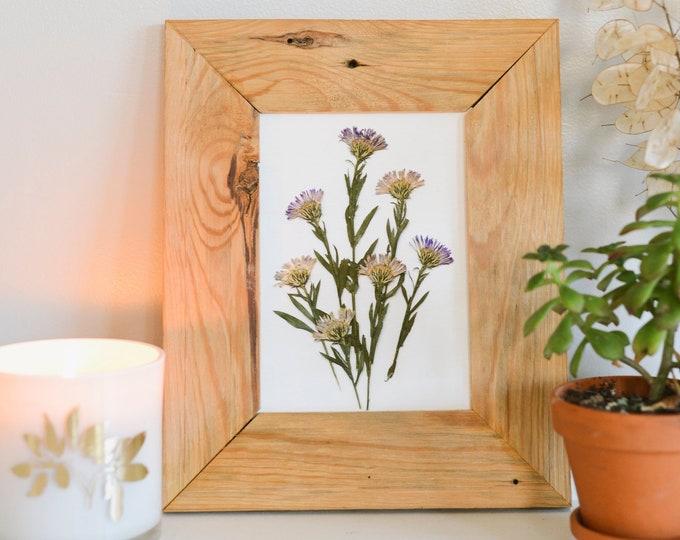 Aster / September | Print artwork of pressed flowers | 100% cotton rag paper | Birth month flowers, Botanical artwork
