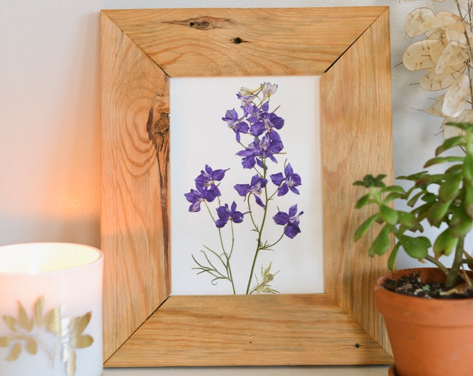Larkspur / July | Print artwork of pressed flowers | 100% cotton rag paper | Birth month flowers, Botanical artwork