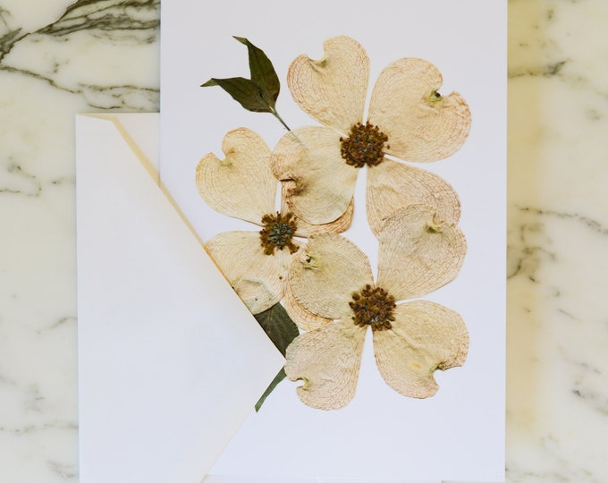 """Flowering dogwood, VA NC State Flower   Blank Greeting Card with white linen envelope   Print reproduction of pressed flower design   4.5x6"""""""