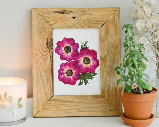 Hot Pink, Fuchsia, Magenta Anemone | Print reproduction artwork of pressed flowers | 100% cotton rag paper | Botanical artwork