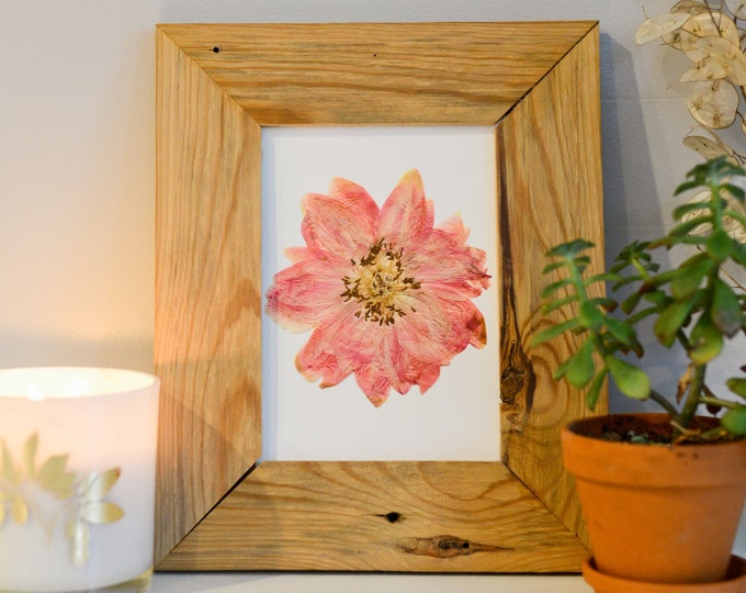 Coral charm peony | Print artwork of pressed flower | 100% cotton rag paper | State flower, Botanical artwork