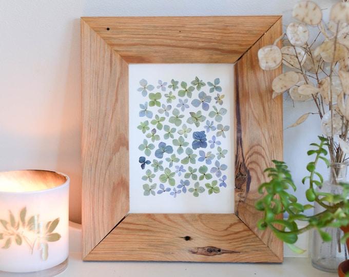 "Blue hydrangea | Print artwork of pressed flower | 5x7"" 8x10"" 11x14"" 100% cotton rag paper | Botanical artwork"
