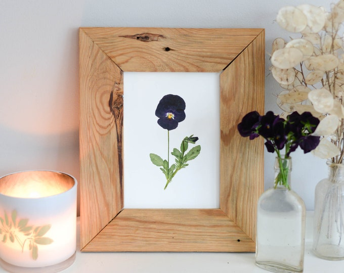 Black Viola stem | Print reproduction artwork of pressed flowers | 100% cotton rag paper | Botanical artwork