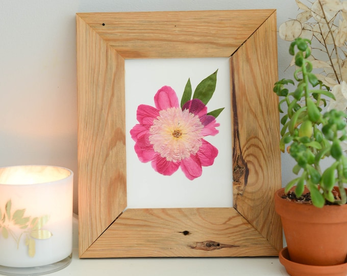 Pink peony | Print artwork of pressed flower | 100% cotton rag paper | Indiana State flower, Botanical artwork