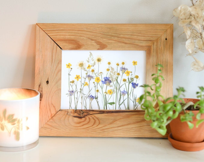 Daisy meadow | Print reproduction artwork of pressed flowers | 100% cotton rag paper | Botanical art