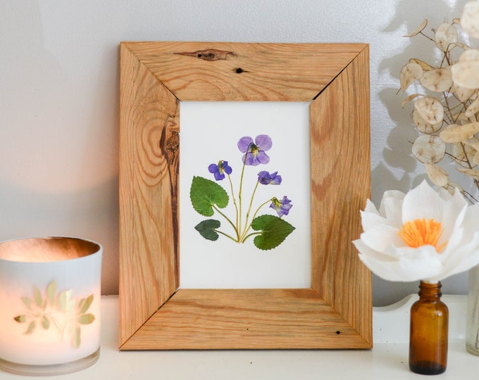 Violet / February | Print artwork of pressed flowers | 100% cotton rag paper | Birth month flowers, IL, NJ, RI, Wi state flower