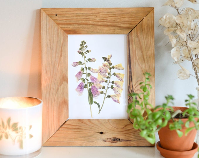 Foxglove | Print reproduction artwork of pressed flowers | 100% cotton rag paper | Botanical art
