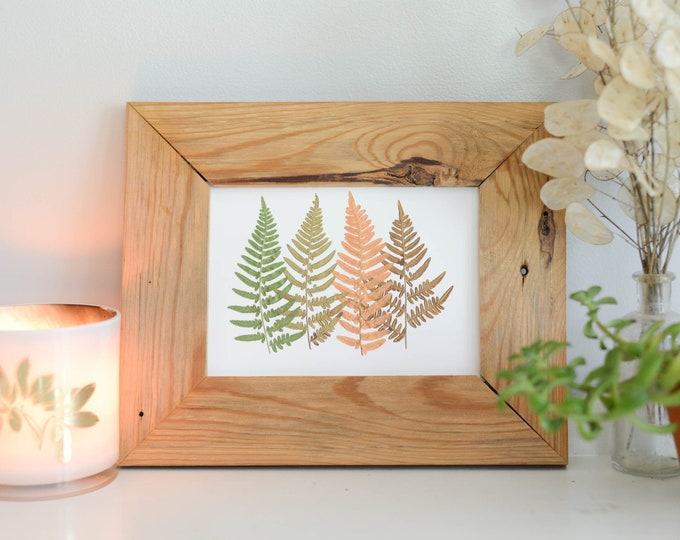 Fern Spectrum | Print reproduction artwork of pressed autumn leaves | 100% cotton rag paper | Botanical artwork