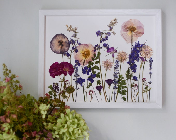Summer Meadow / Four Seasons | Limited edition, numbered Print artwork of pressed flowers | 100% cotton rag paper | Botanical artwork