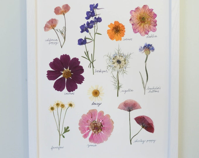 July Morning | Print artwork of pressed summer flowers | 100% cotton rag paper | Botanical artwork