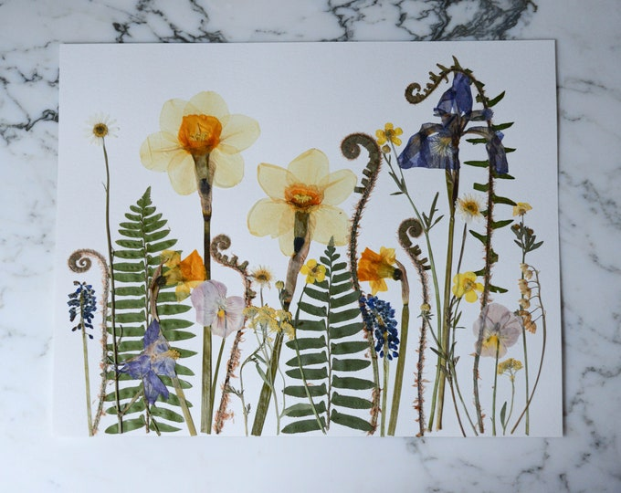 "ORIGINAL: Spring Meadow | Real pressed flower artwork, Four Seasons 2020 series, 11x14"" | Botanical artwork"