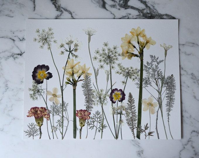 "ORIGINAL: Winter Meadow | Real pressed flower artwork, Four Seasons 2020 series, 11x14"" | Botanical artwork"