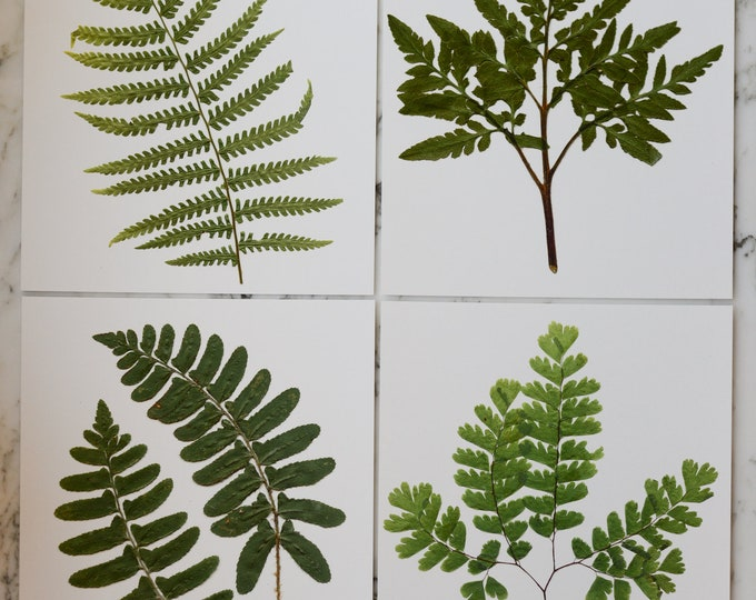 """SET OF 4 