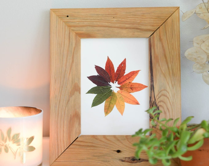 Sumac Colorwheel | Print reproduction artwork of pressed autumn leaves | 100% cotton rag paper | Botanical artwork