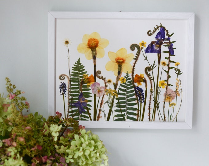 Spring Meadow / Four Seasons | Limited edition, numbered Print artwork of pressed flowers | 100% cotton rag paper | Botanical artwork
