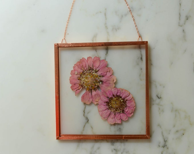 """Flower of the Month - September 2021 