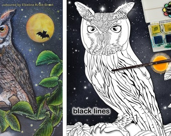 Owl Colouring Pages - Adult Colouring Pages - Owls - Birds Coloring Page - Owl Wall Art - Light & Dark Backgrounds PDF - Black Lines A3