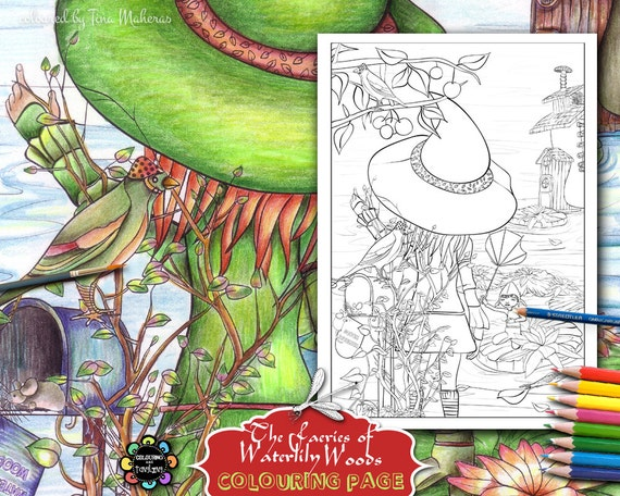 47 Colouring Book Adults Best Picture HD