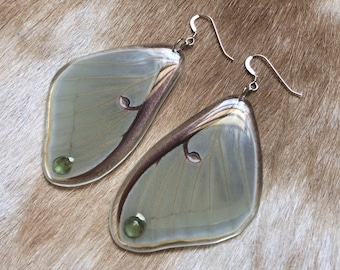 Luna Moth Earrings, Real Butterfly, Taxidermy Art, Nature,Sterling Silver Jewelry, Green Apatite, Resin Insect, Entomology, Boho Accessories