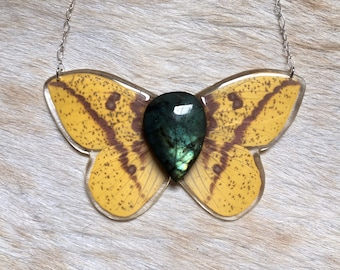 Real Imperial Moth with Labradorite, Butterfly Necklace, Nature Inspired, Resin Insect, Sterling Silver Moth Pendant, Entomology, Taxidermy