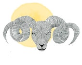 Zodiac sign taurus / Sterrenbeeld ram
