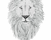 Illustration lion ~ illus...