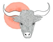 Zodiac sign taurus / Sterrenbeeld stier