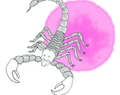 Zodiac sign scorpio / Sterrenbeeld schorpioen
