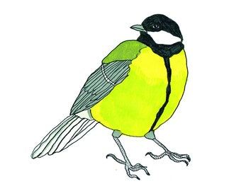 Koolmees ~ Great tit