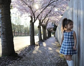 Violett's Gingham Dress