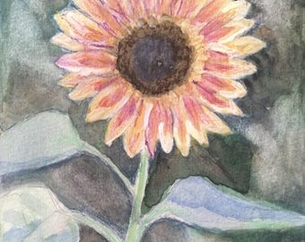 """Original Pink and Yellow Sunflower Painting, """"Strawberry Blonde"""" Sunflower, Watercolor, 5 """" x 7"""""""