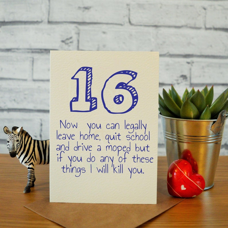 16th Birthday Card Son Funny Brother So