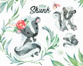 Little Skunk. Watercolor animals clip art, stinker, wild, native, forest, wreath, florals, North America, greeting, babyshower, woodland