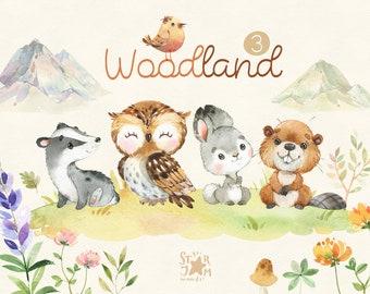 Woodland 3. Little animals watercolor clip art, owl, rabbit, beaver, badger, hare, florals, baby-shower, woods, wild, forest, baby, nursery