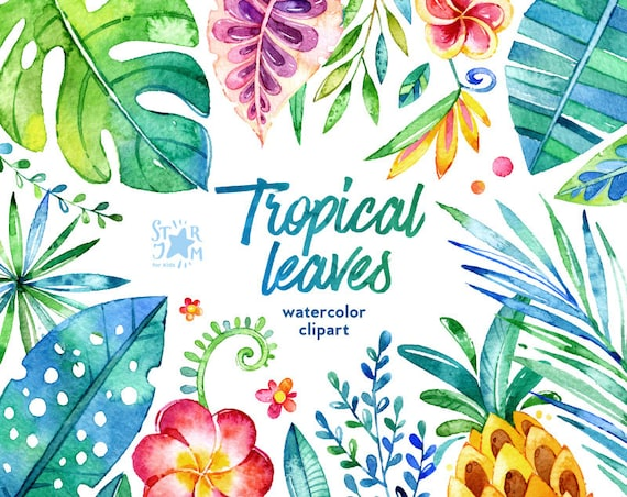 Tropical Leaves 44 Floral Elements Watercolor Clip Art Etsy Flowers leaves tropical tropical leaves tropical flowers flowers leaves green leaves high definition picture leaf background close up dew beautiful plants flower petals autumn tulips high definition pictures fresh beautiful flower white tree blue drops autumn leaves fall postcards nature bouquet. tropical leaves 44 floral elements watercolor clip art jungle flowers pineapple cards diy invite baby colorful art leaf foliage