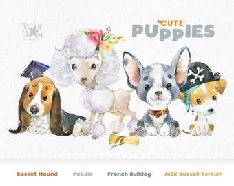 Cute Puppies 5. Jack Russell Terrier, French Bulldog, Basset Hound, Poodle. Watercolor dog clipart, pet, creator, portrait pup, nursery, art
