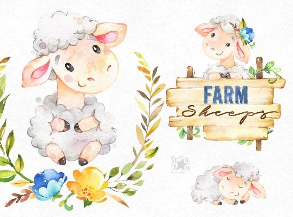 Bauernhof. Schafe. Aquarell Land Clipart Lamm Blumenkranz | Etsy