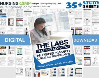 150 Study Sheets Nursing School Medical Surgical Med Surg   Etsy