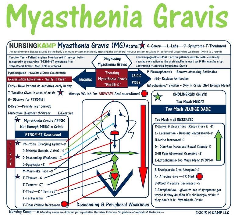 Myasthenia Gravis Nursing Study Sheets For Nursing School And Medical Surgical Clinical Cheat Sheet