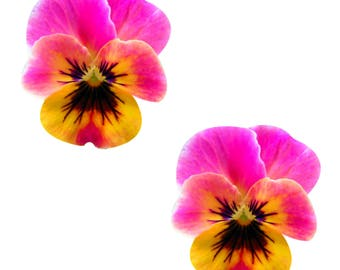 Neva Nude Freaking Awesome Flower Pansy Nipztix Pasties Nipple Cover