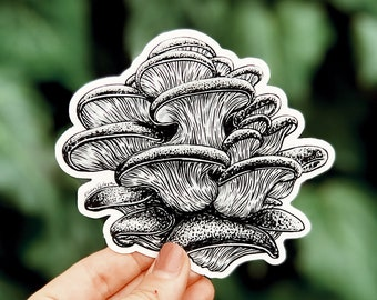 Mushroom II Vinyl Sticker, Nature-Inspired for Laptop, Waterbottle or Bumper Sticker Use