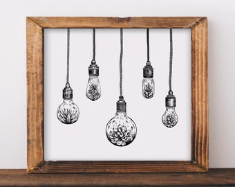 Hanging Succulent Light Bulbs Art Print