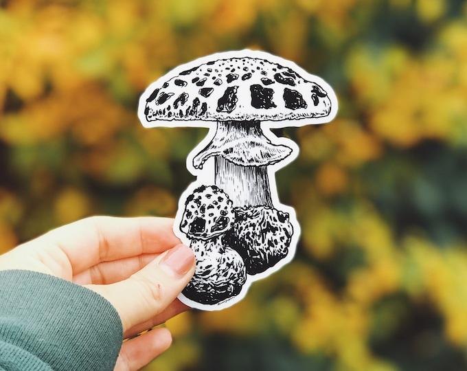 Mushroom I Vinyl Sticker