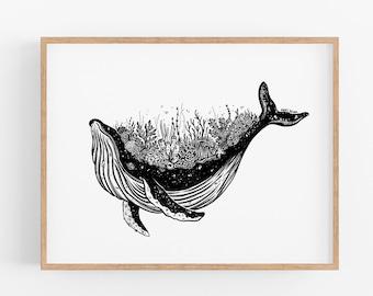 Coral Whale Art Print