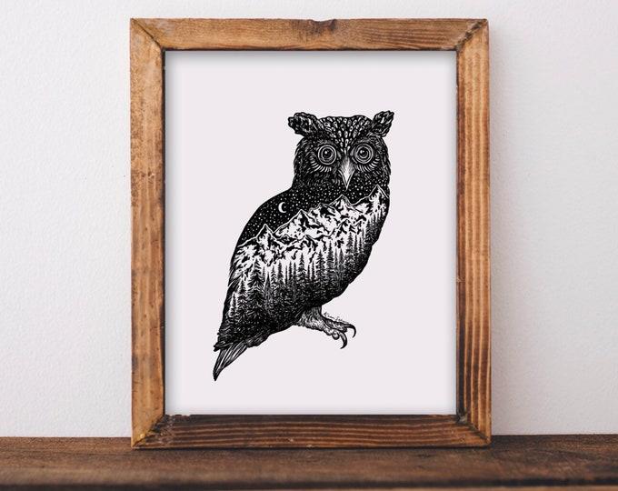 Mountainous Owl Fine Art Print