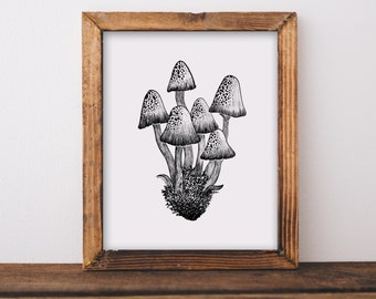 Mushrooms II Fine Art Print